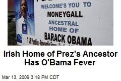 Irish Home of Prez's Ancestor Has O'Bama Fever