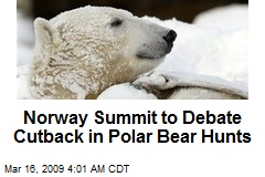 Norway Summit to Debate Cutback in Polar Bear Hunts