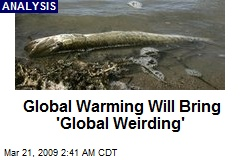Global Warming Will Bring 'Global Weirding'