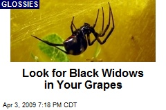 Look for Black Widows in Your Grapes