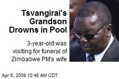 Tsvangirai's Grandson Drowns in Pool