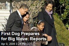First Dog Prepares for Big Move: Reports