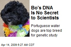 Bo's DNA Is No Secret to Scientists