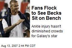 Fans Flock to See Becks Sit on Bench