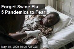 Forget Swine Flu— 5 Pandemics to Fear