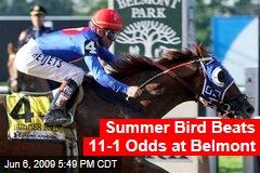 Summer Bird Beats 11-1 Odds at Belmont