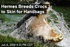 Hermes Breeds Crocs to Skin for Handbags