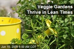 Veggie Gardens Thrive in Lean Times