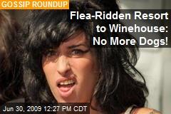 Flea-Ridden Resort to Winehouse: No More Dogs!