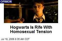 Hogwarts Is Rife With Homosexual Tension