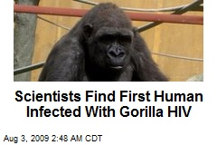 Scientists Find First Human Infected With Gorilla HIV