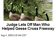 Judge Lets Off Man Who Helped Geese Cross Freeway