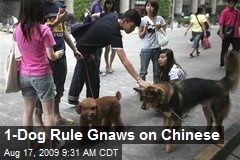 1-Dog Rule Gnaws on Chinese