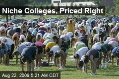 Niche Colleges, Priced Right