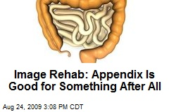 Image Rehab: Appendix Is Good for Something After All