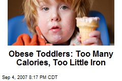 Obese Toddlers: Too Many Calories, Too Little Iron