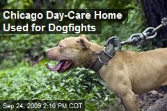 Chicago Day-Care Home Used for Dogfights