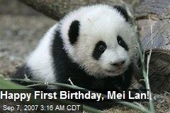 Happy First Birthday, Mei Lan!