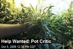 Help Wanted: Pot Critic