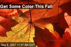 Get Some Color This Fall