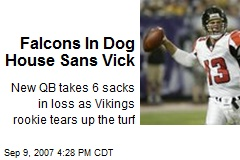 Falcons In Dog House Sans Vick
