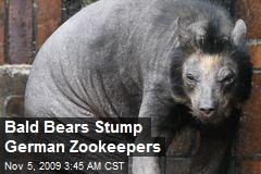Bald Bears Stump German Zookeepers