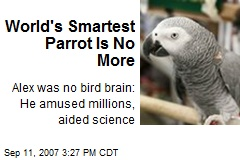 World's Smartest Parrot Is No More