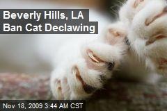 Beverly Hills, LA Ban Cat Declawing