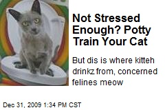 Not Stressed Enough? Potty Train Your Cat