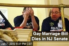Gay Marriage Bill Dies in NJ Senate