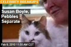 Susan Boyle, Pebbles Separate