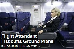 Flight Attendant Fisticuffs Ground Plane