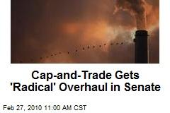 Cap-and-Trade Gets 'Radical' Overhaul in Senate