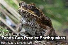 Toads Can Predict Earthquakes