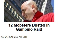 12 Mobsters Busted in Gambino Raid