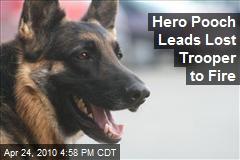 Hero Pooch Leads Lost Trooper to Fire