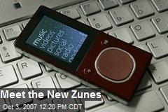 Meet the New Zunes