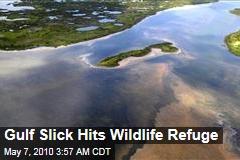Gulf Slick Hits Wildlife Refuge