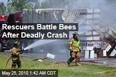 Rescuers Battle Bees After Deadly Crash