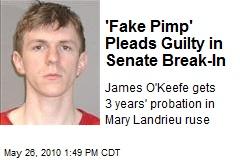 'Fake Pimp' Pleads Guilty in Senate Break-In