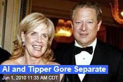 Al and Tipper Gore Separate