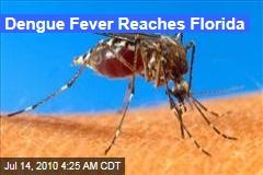 Dengue Fever Reaches Florida