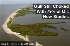 Gulf Still Choked With 79% of Oil: New Studies