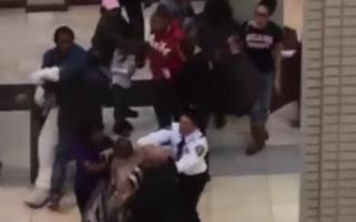 Charge Reduced for Mall Easter Bunny Who Fought Toddler's Dad