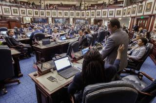 Florida Passes Gun-Control Bill in Wake of Parkland Shooting