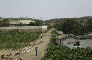North Korea Suffering Worst Drought Since 1982