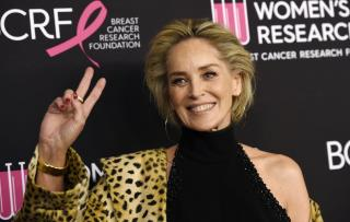Sharon Stone: Hollywood Was 'Brutally Unkind'