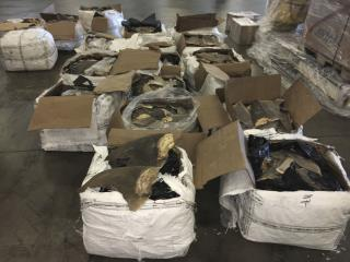 Shark Fins Worth Up to $1M Seized in Florida