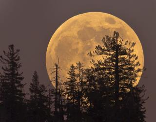 We're About to Be Spoiled With Supermoons