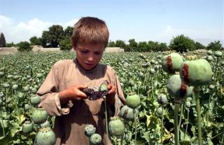 Afghans Hard-Pressed to Hold Gains in War on Opium